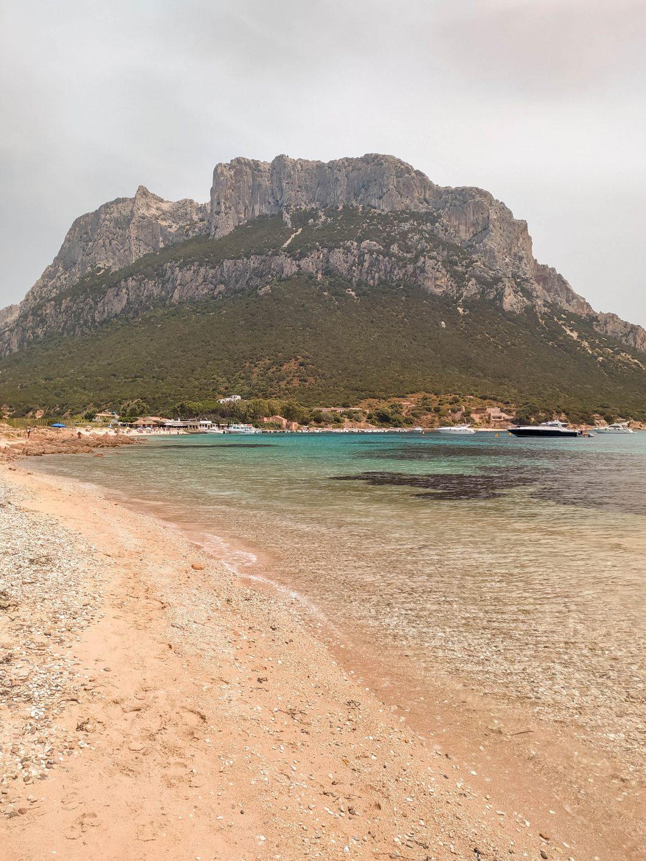 escursioni isola di tavolara
